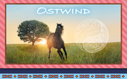 Ostwind - Frühjahr 2019: Briefpapier-Set