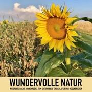 Wundervolle Natur: Naturgeräusche (ohne Musik) zum Entspannen, Regenerieren und Einschlafen - Cover