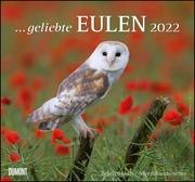 ... geliebte Eulen 2022 - DUMONT Wandkalender - mit den wichtigsten Feiertagen - Format 38,0 x 35,5 cm