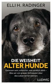 Die Weisheit alter Hunde - Cover