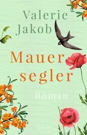 Mauersegler - Cover