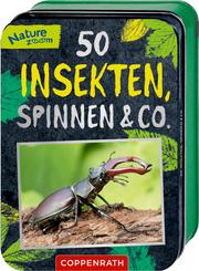 50 Insekten, Spinnen & Co. - Cover