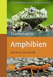 Taschenatlas Amphibien - Cover