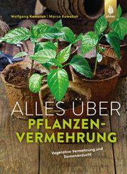 Alles über Pflanzenvermehrung - Cover