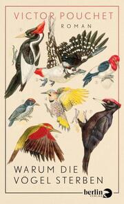 Warum die Vögel sterben