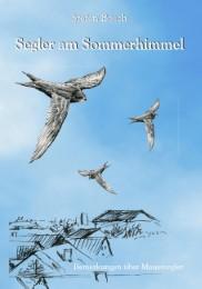 Segler am Sommerhimmel - Cover