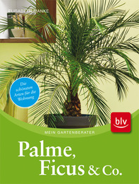 Palme, Ficus & Co.