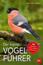 Der kleine Vogelführer - Cover
