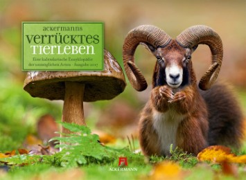 ackermanns Verrücktes Tierleben 2017