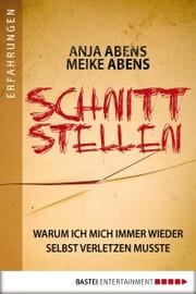 Schnittstellen - Cover