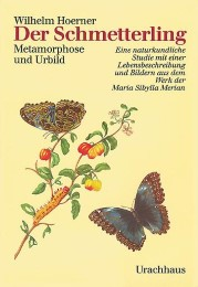 Der Schmetterling - Cover