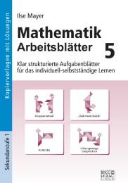 LangerBlomqvist - Mathematik Arbeitsblätter 5, Mayer, Ilse, Brigg ...