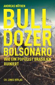 Bulldozerpolitik