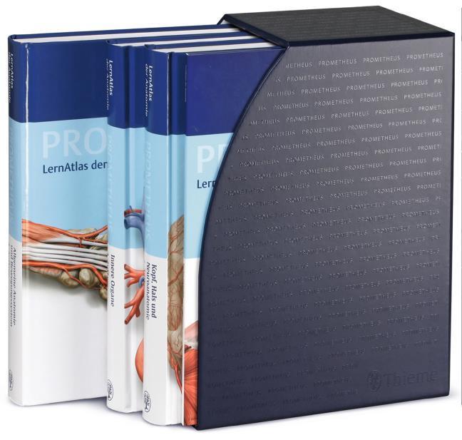 PROMETHEUS LernPaket Anatomie (Gebunden in Kassette) | Buchhandlung ...