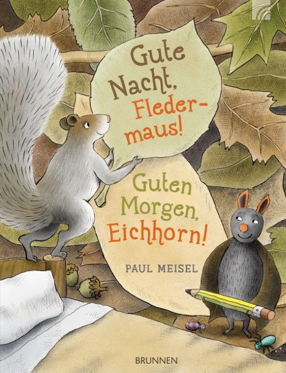 Gute Nacht Fledermaus Guten Morgen Eichhorn Von Paul Meisel Gebundenes Buch