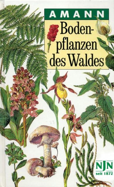 Bodenpflanzen Des Waldes Gebundenes Buch Buchhandlung Bucherinsel