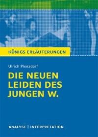 Die Neuen Leiden Des Jungen W Von Ulrich Plenzdorf Textanalyse Und
