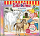 Bibi & Tina 100 - Das Waisen-Fohlen