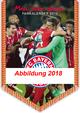 FC Bayern Kalender 2019