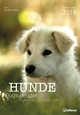 Hunde Quizkalender