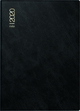 rido/idé Taschenkalender Modell Technik III, Schaumfolien-Einband Catana, schwarz 2020