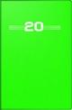 rido/idé Taschenkalender, Kunststoff-Einband, grün 2020