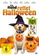 Ein Hund rettet Halloween