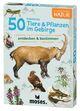50 heimische Tiere & Pflanzen im Gebirge erkennen & bestimmen