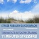 11 Minuten Stressfrei - Stress abbauen ganz einfach! Traumreise ans Meer & Autogenes Training