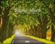 Bäume - Alleen 2022