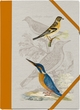 Pasta für Nachtigallen - Sammelmappe: Eisvogel