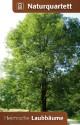 Naturquartett Heimische Laubbäume