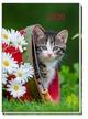 Taschenkalender 'Katze' 2020