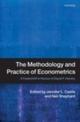 Methodology and Practice of Econometrics