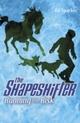 Shapeshifter: Running the Risk
