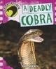 Deadly Cobra