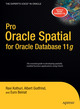 Pro Oracle Spatial for Oracle Database 11g