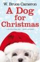 Dog for Christmas