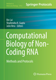 Computational Biology of Non-Coding RNA