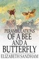 Perambulations of a Bee and a Butterfly