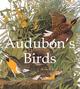 Audubon's Birds