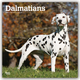 Dalmatians - Dalmatiner 2020 - 16-Monatskalender mit freier DogDays-App