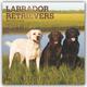 Labrador Retrievers 2020 - 16-Monatskalender mit freier DogDays-App