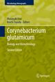 Corynebacterium glutamicum