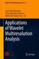 Applications of Wavelet Multiresolution Analysis