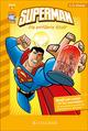 Superman: Die entführte Stadt
