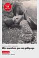 Ecuador - Mas conchas que un galapago