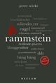 Rammstein. 100 Seiten