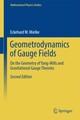 Geometrodynamics of Gauge Fields