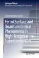 Fermi Surface and Quantum Critical Phenomena of High-Temperature Superconductors